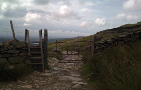 own photo sheep gate