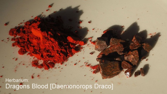wiki dragons blood 1280px-Dragon's_blood_(Daemomorops_draco) copy