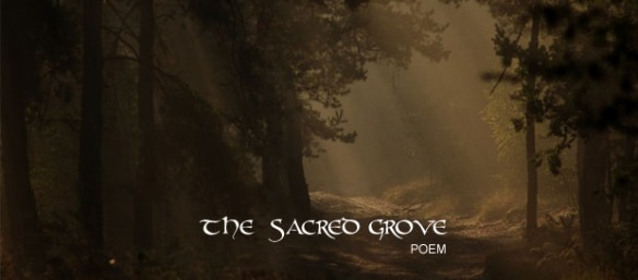 02 SACRED GROVE copy