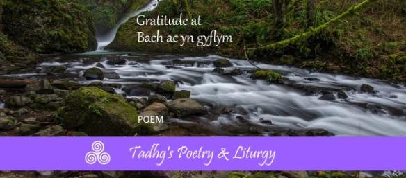 160826 gratitude at bach POETRY LITURGY