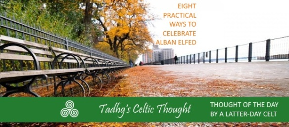 160909-eight-pract-alban-elfed-standard-thoughts