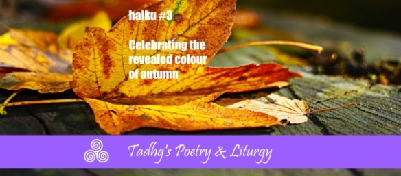 160930-colours-of-autumn-1-standard-poetry-liturgy