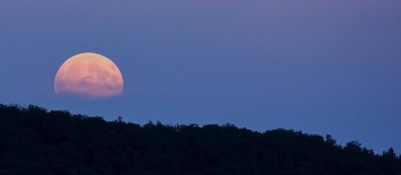 full-moon-pixabay-914410_960_720
