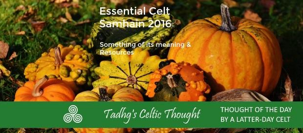 20161030-samhaim-2016standard-thoughts