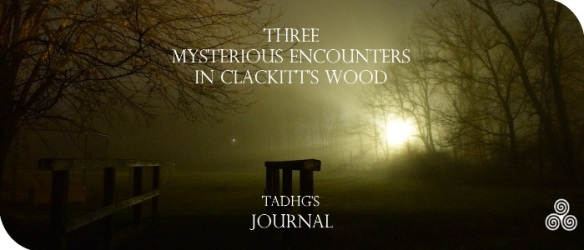 20170119-mysterious-encounters-journal