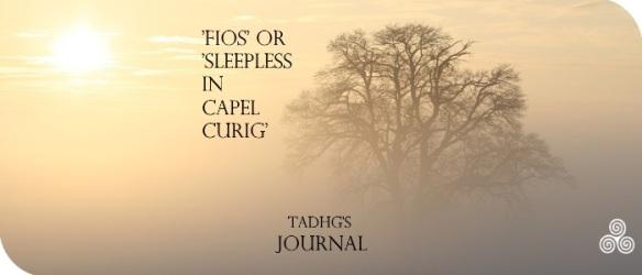 20170123-fios-tadhgs-journal