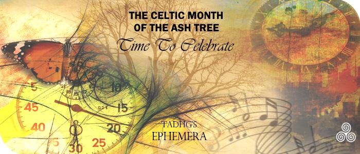 20170215-ash-tree-month-ephemera