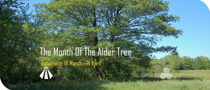 20170315 month of the alder tree EPHEMERA