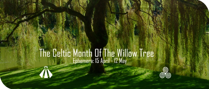 20170414 CELTIC MONTH OF THE WILLOW TREE EPHEMERA