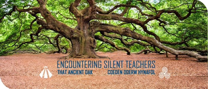 20170517 ENCOUNTERING SILENT TEACHERS