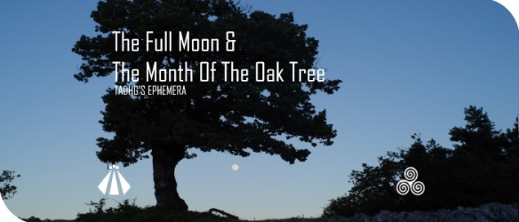 20170607 THE FULL MOON AND THE MONTH OF THE OAK TREE EPHEMERA