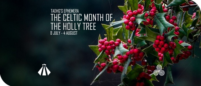 20170706 THE CELTIC MONTH OF THE HOLLY TREE