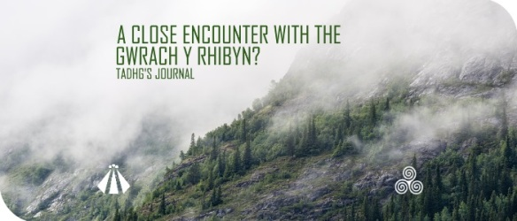 20170711 A CLOSE ENCOUNTER WITH THE GWRACH Y RIBYN