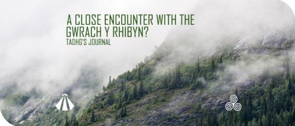 20170711 A CLOSE ENCOUNTER WITH THE GWRACH Y RIBYN