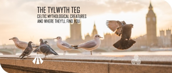20170829 THE TYLWYTH TEG MYTH AND MEANING