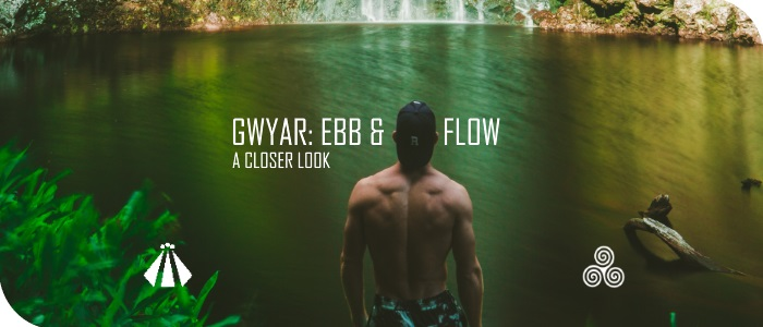 20170922 GWYAR AN EVEN CLOSER LOOK