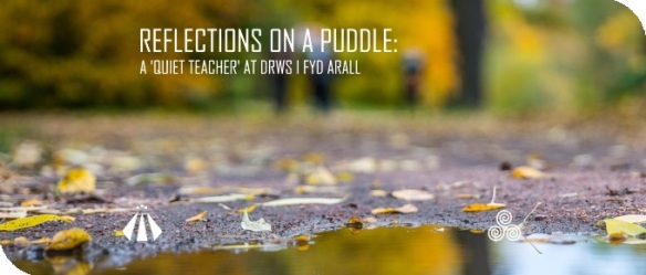 20180125 REFLECTION ON A PUDDLE A QUIET TEACHER AT DRWS I FYD ARALL