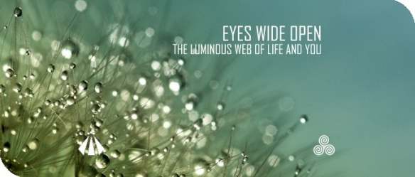 20180501 EYES WIDE OPEN THE LUMINOUS WEB OF LIFE AND YOU