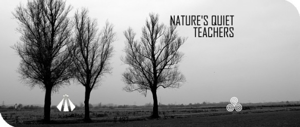 20190214 NATURES QUIET TEACHERS AND THE THREE LESSONS