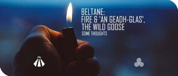 20190427 FIRE AND AN GEADH-GLAS THE WILD GOOSE
