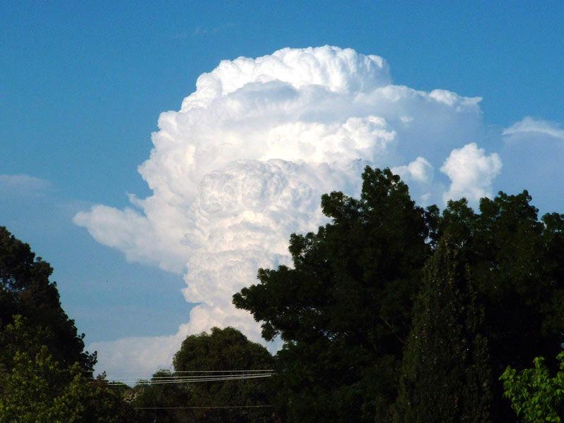 cloud cumulonombus Wagga-Cumulonimbus