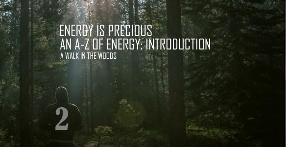 ENERGY IS PRECIOUS 2